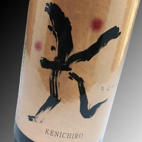 千代の光KENICHIRO「K」