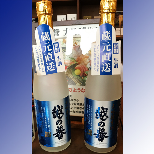 越の誉 大吟醸生酒720ml