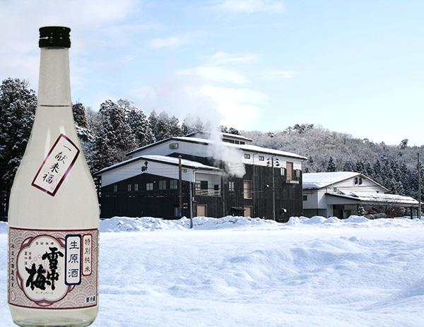 雪中梅 特別純米 しぼりたて無濾過生原酒