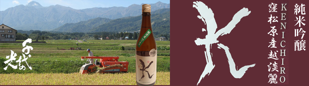 千代の光純米吟醸KENICIRO 窪松原産越淡麗